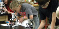 6th grade microscopes